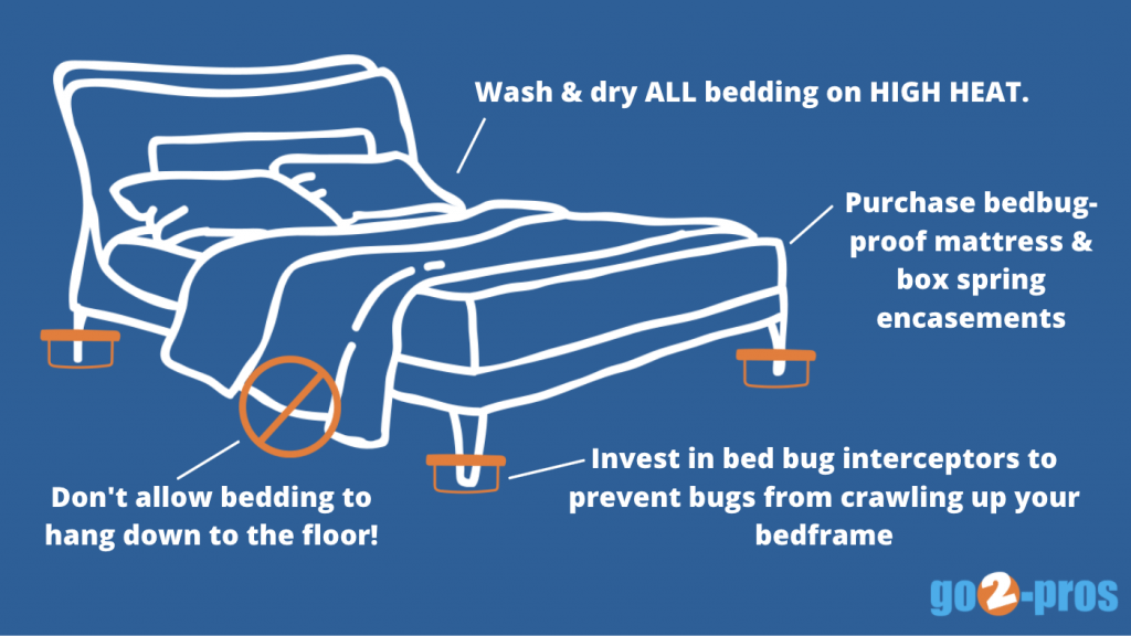 prevent bed bugs on bed